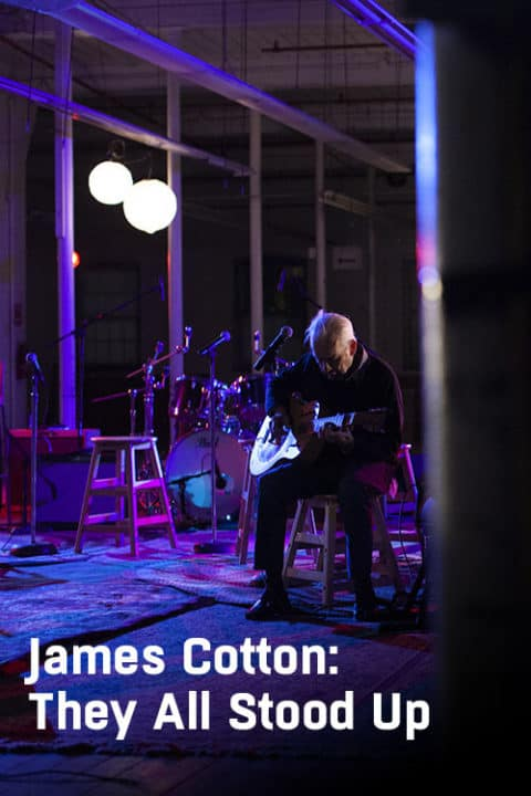James Cotton: They All Stood Up